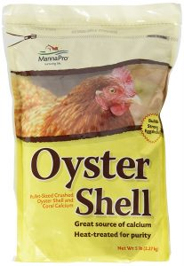 Raising Laying Hens - Oyster Shell